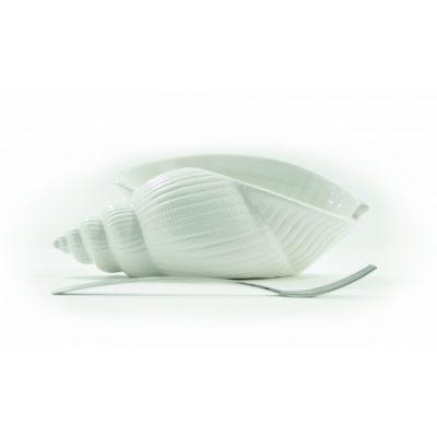 conchiglia-ionia-piccola-bianca-1