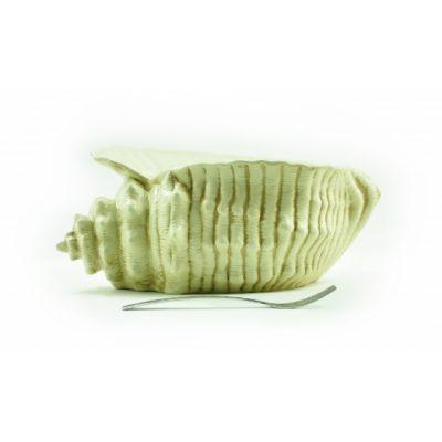 conchiglia-mediterranea-grande-oro-1