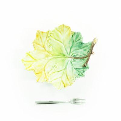 foglia-platano-media-primavera-1